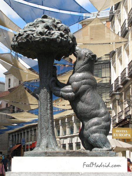 The Bear and the Strawberry Tree - El Oso y el Madroño